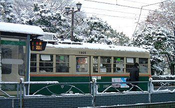 snow_den1s