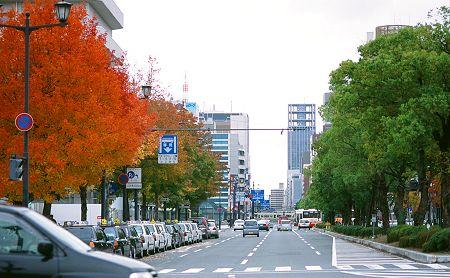 2006_kouyou3