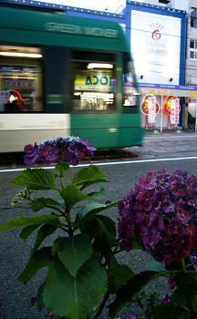 2007_enkoubashi01
