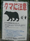 200811_kouyou_kuma