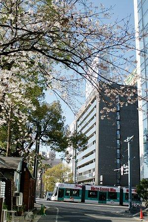 20100330_hashimoto01