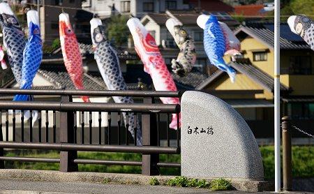 20100424_shiraki02