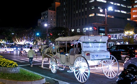 20101117_06548
